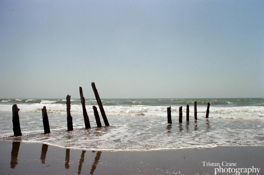 TristanCrane_OceanBeach_w