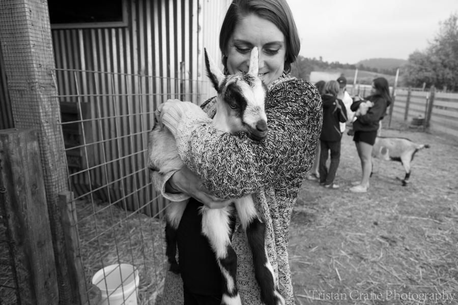 Goats_DSCF4499